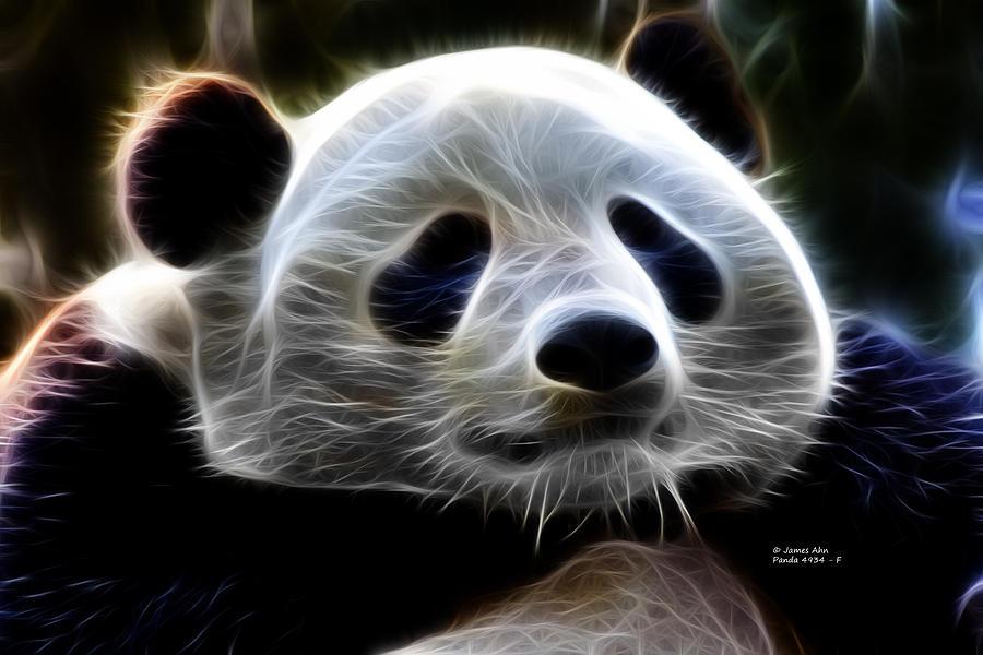 Panda Digital Art - Panda - 4934 - F by James Ahn