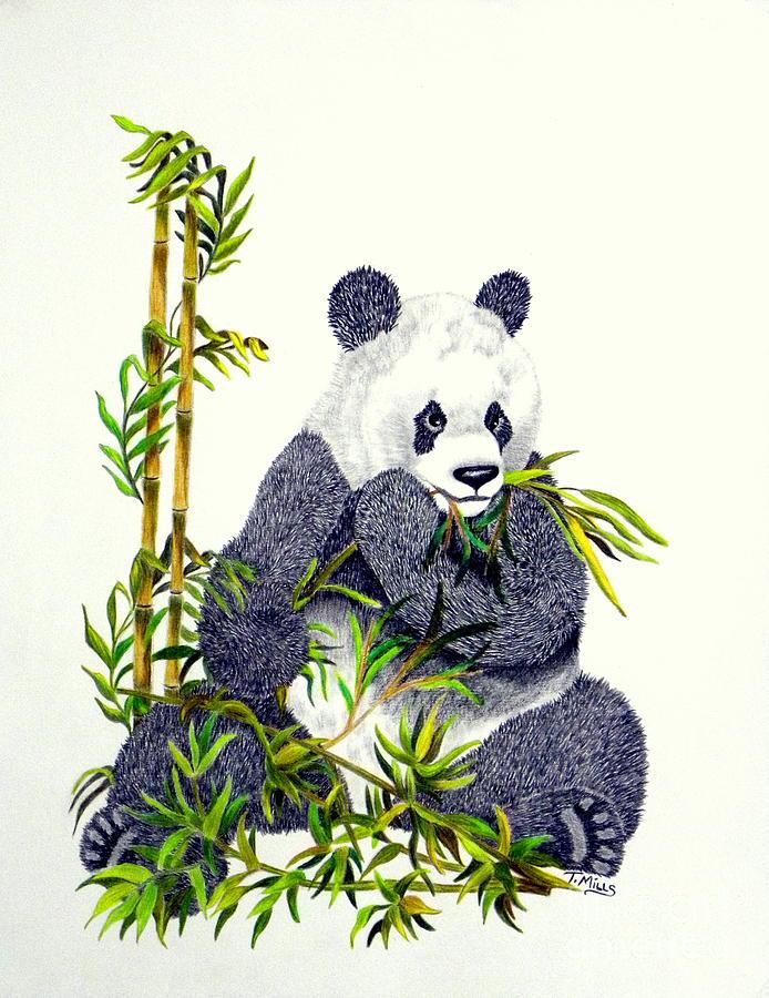 Back To Terri Mills Wall Art Drawings Panda