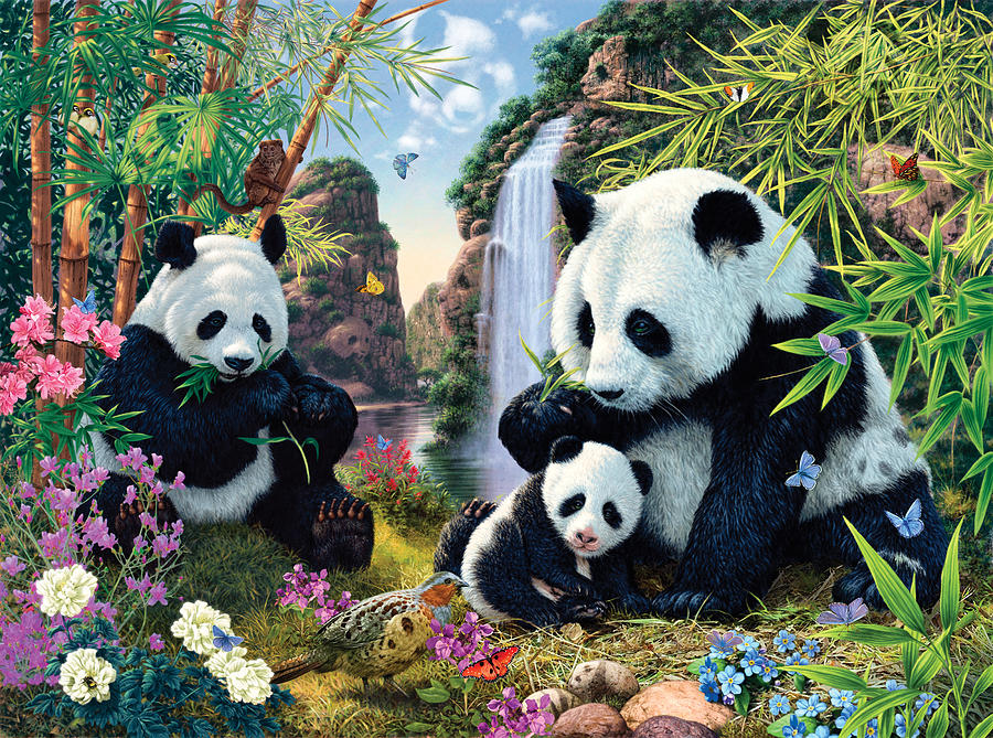 Steve Read Photograph - Panda Valley by MGL Meiklejohn Graphics Licensing