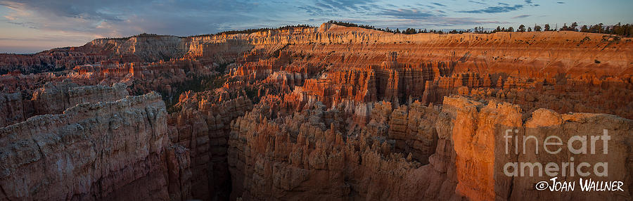 Bryce National Park Photograph - Panorama Of Bryce Canyon Amphitheater by Joan Wallner