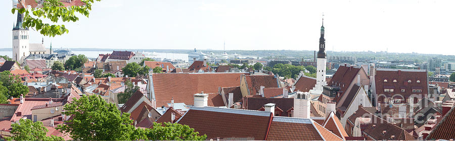 Panorama Of Tallin Rooftops Photograph