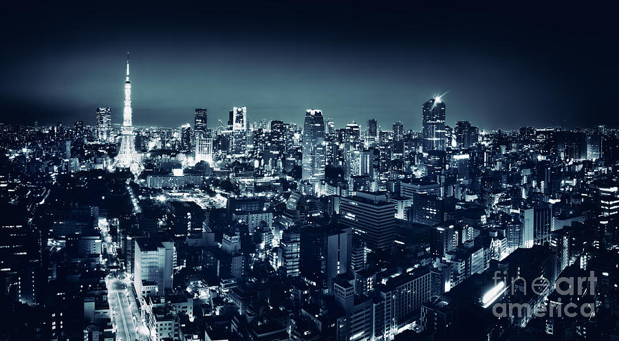 Panoramic City Scenery Of Tokyo And Tokyo Tower Black And
