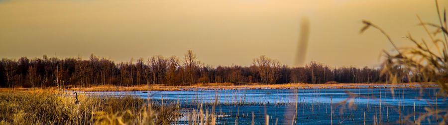 Landscape Photograph - Panoramic Goose Home by Bruno Santos