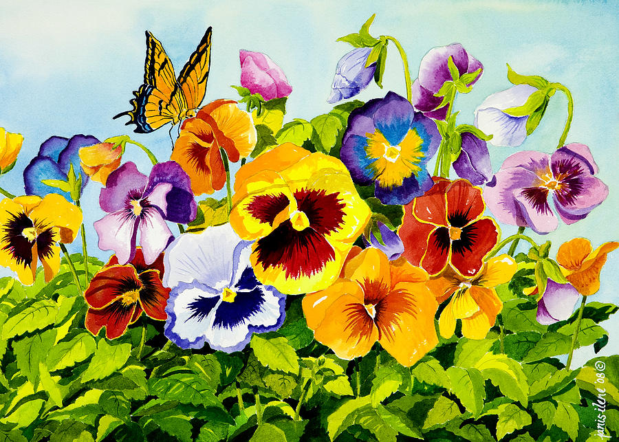 Flower Painting - Pansies With Butterfly by Janis Grau