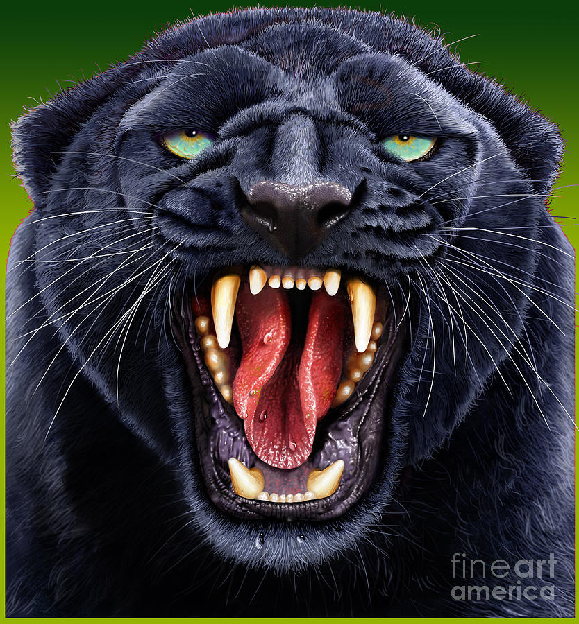 Panther Digital Art - Panther by Jurek Zamoyski