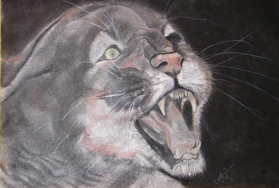 Panther Drawing - Panther by Rebecca Wiltfong Frisbee