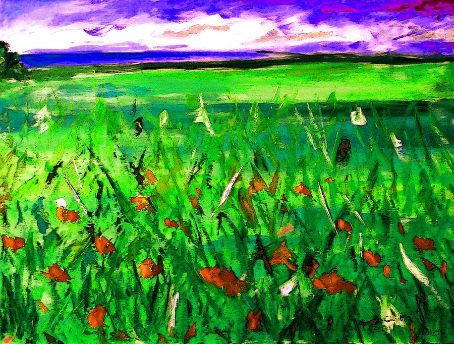 Poppies Painting - Papaveri by Marcello Cicchini