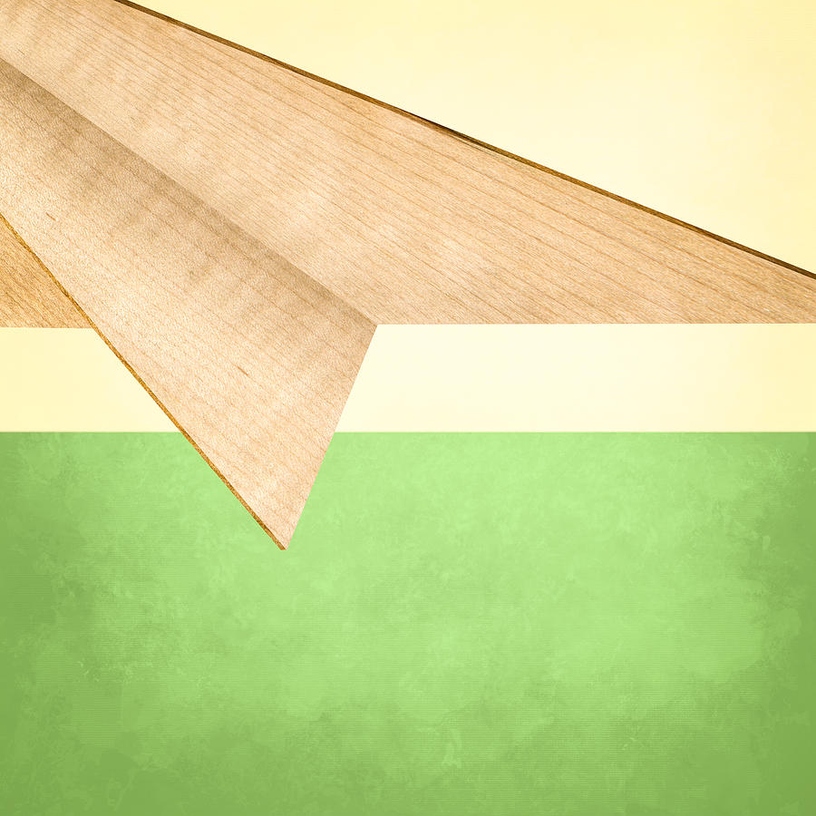 Aircraft Photograph - Paper Airplanes Of Wood 17 by YoPedro