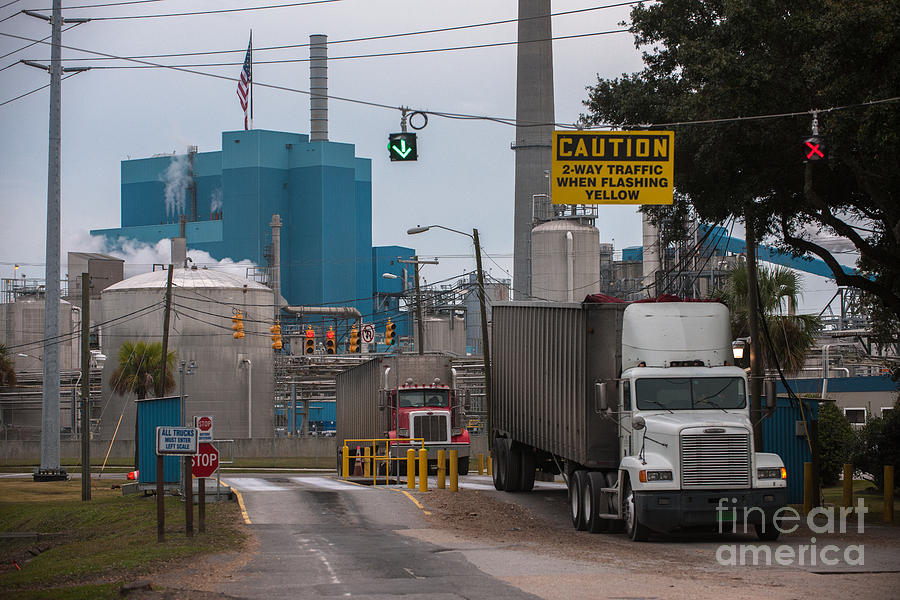 Paper Mill Trucking Photograph