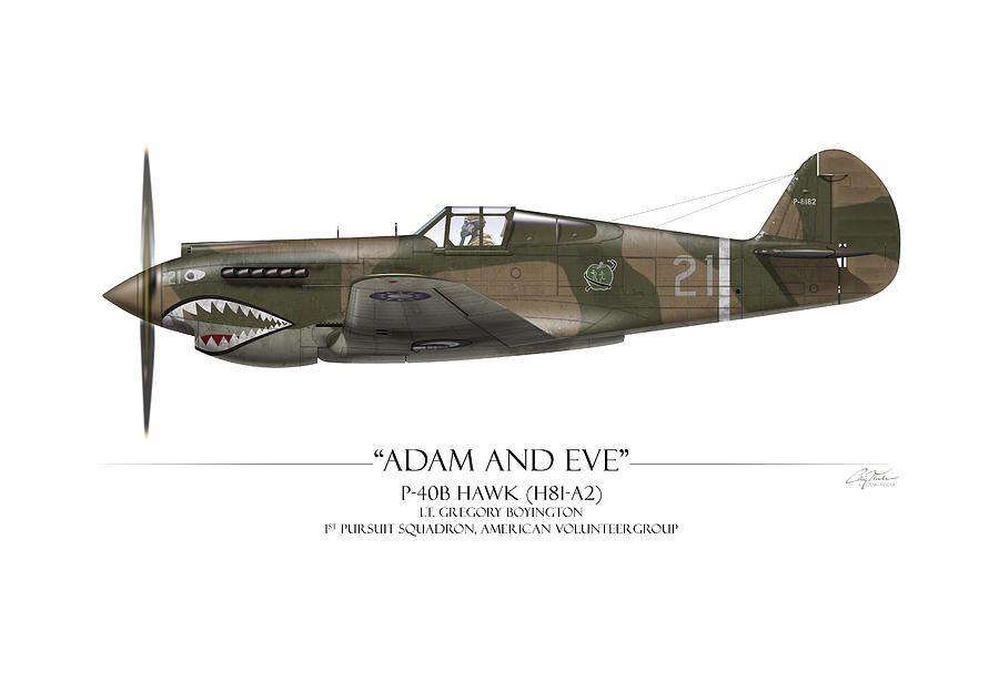 Aviation Painting - Pappy Boyington P-40 Warhawk - White Background by Craig Tinder