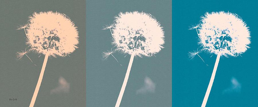 Dandelion Photograph - Parachute Balls by Bob Orsillo