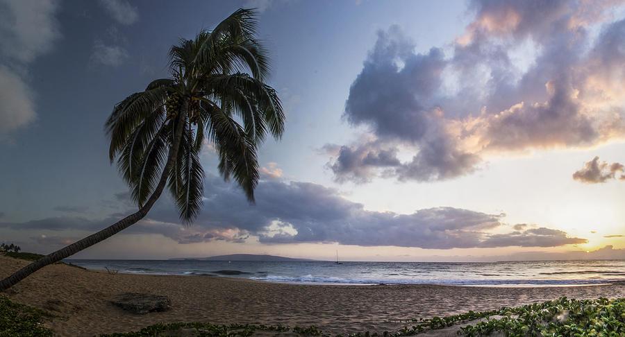 Paradise Photograph - Paradise by Brad Scott