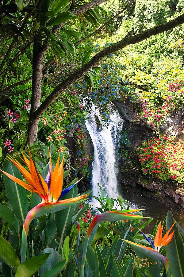 Paradise Falls Photograph - Paradise Falls by Doug Kreuger