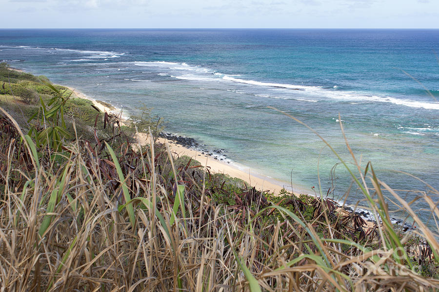Beach Photograph - Paradise Overlook by Suzanne Luft