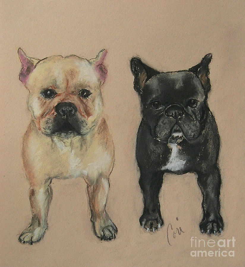 French Bulldog Pastel - Pardon My French by Cori Solomon