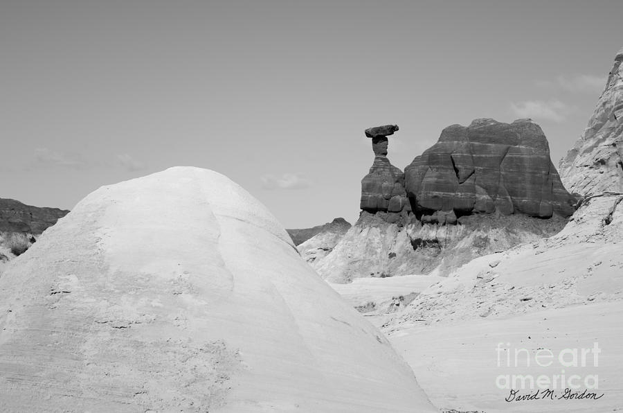 Black Photograph - Paria Utah V by Dave Gordon