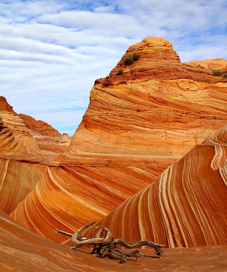 Paria Vermillion Cliffs Wilderness The Wave Photograph By Ed Riche