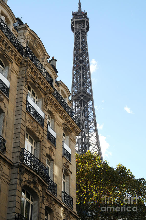 Eiffel Tower Photograph - Paris Eiffel Tower by Haleh Mahbod