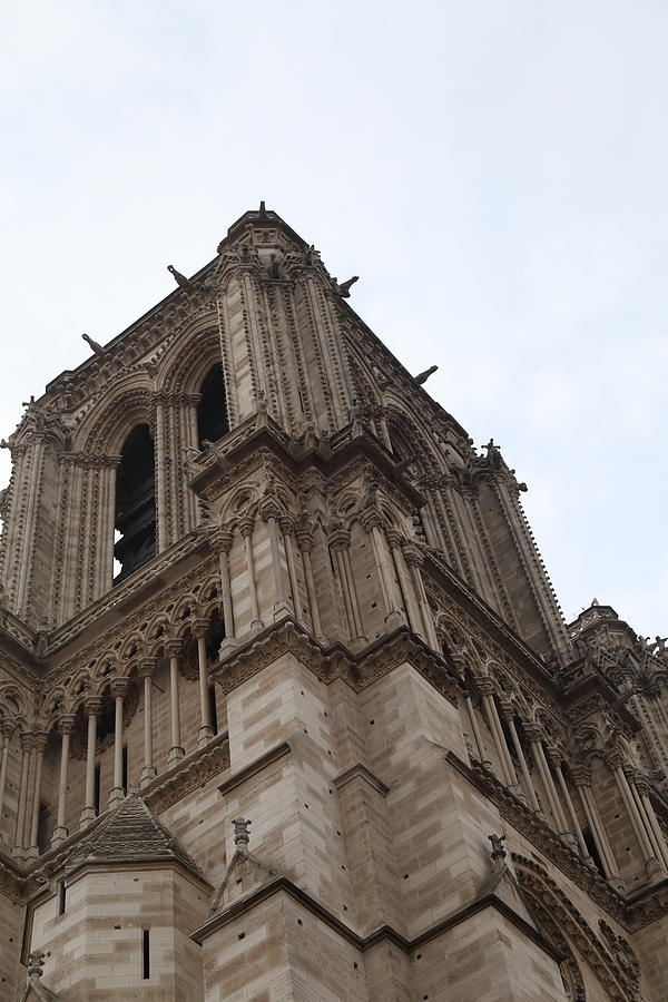 Aged Photograph - Paris France - Notre Dame De Paris - 01139 by DC Photographer