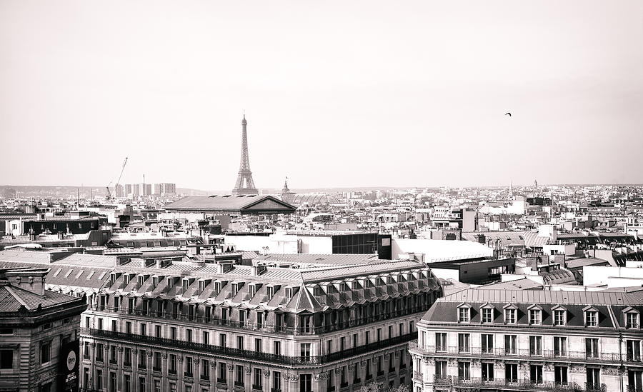 Paris Photograph - Paris In The Afternoon by Vivienne Gucwa