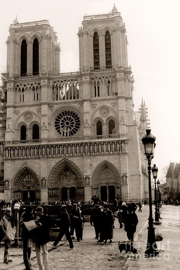 Paris Notre Dame Cathedral Sepia Paris Vintage Sepia Notre Dame Cathedral Street Photography