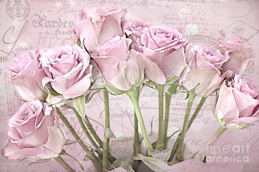 paris pink roses impressionistic french pink roses romantic shabby rh fineartamerica com
