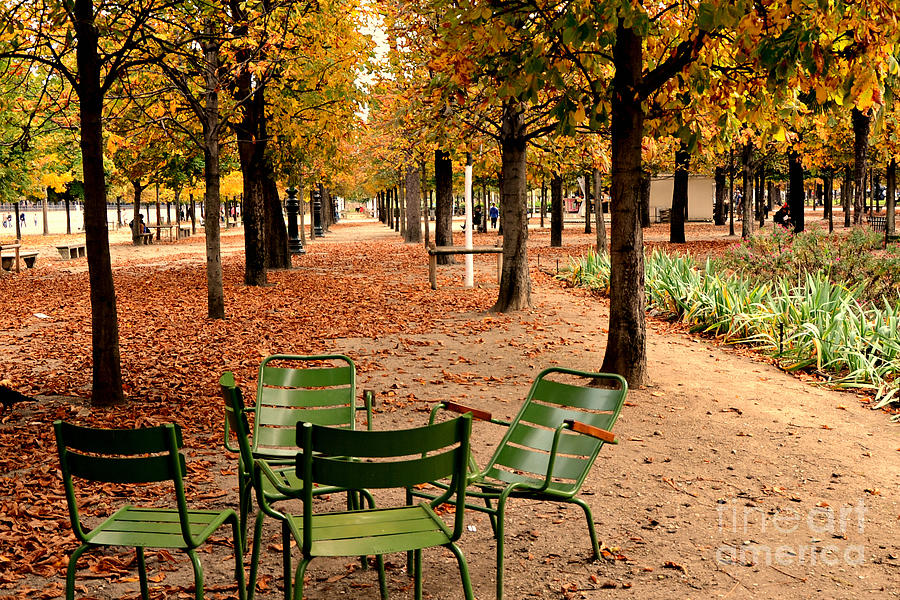 Paris tuileries gardens and trees jardin des tuileries - Sculpture jardin des tuileries ...