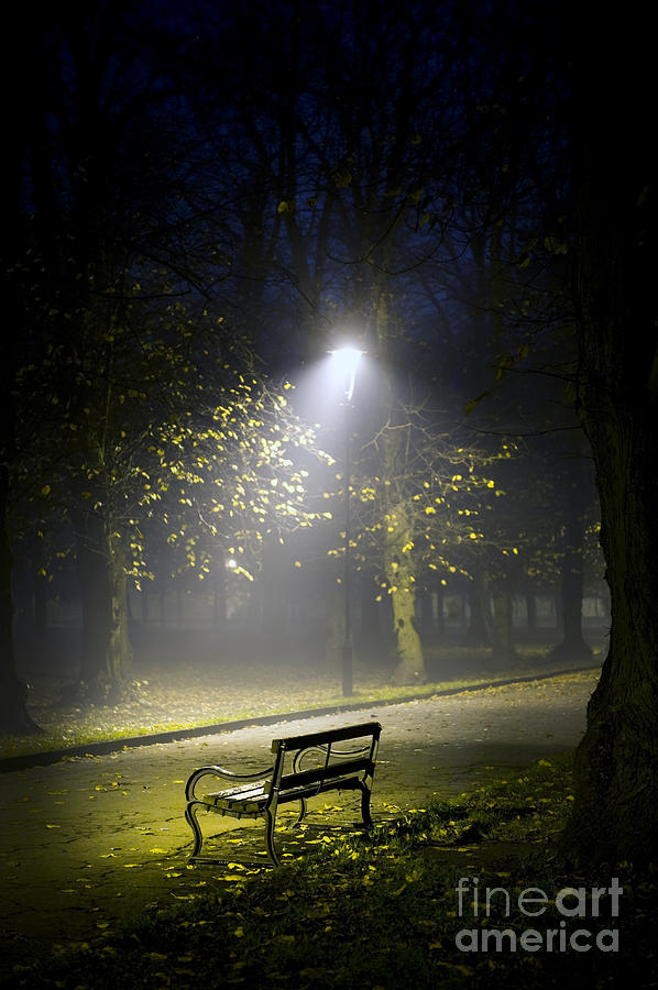Park Bench At Night Photograph By Lee Avison