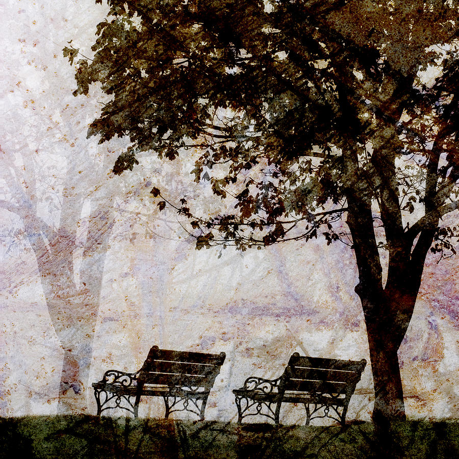 Two Photograph - Park Benches Square by Carol Leigh