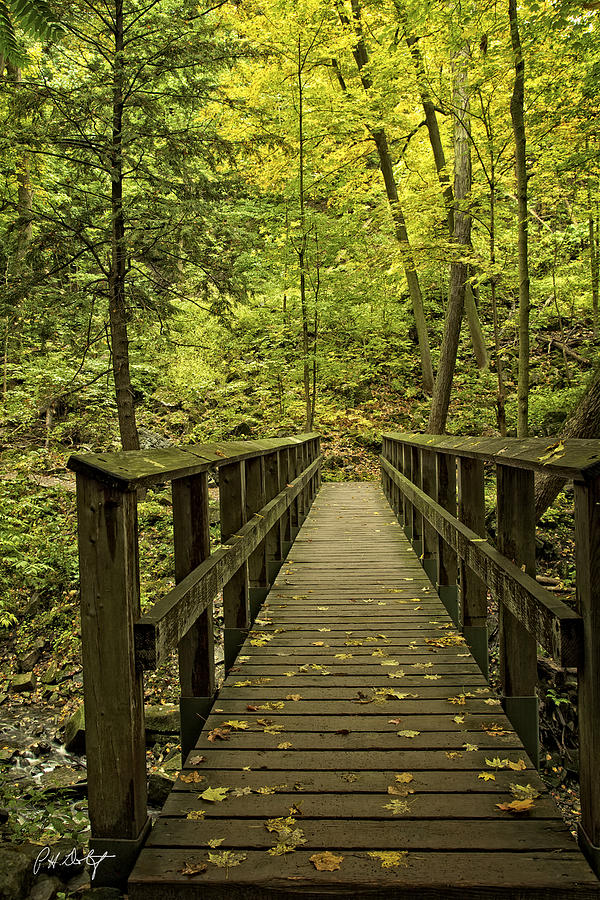 Autumn Photograph - Park Bridge by Phill Doherty