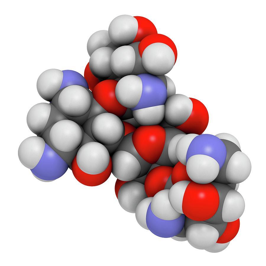 Antibiotic Photograph - Paromomycin Aminoglycoside Antibiotic by Molekuul