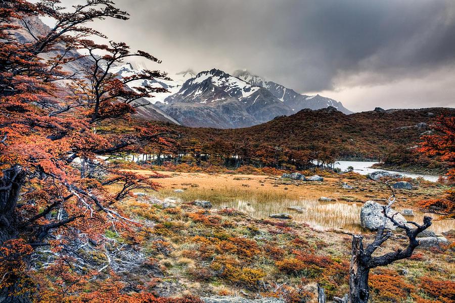 Argentina Photograph - Parque Nacional Los Glaciares by Roman St