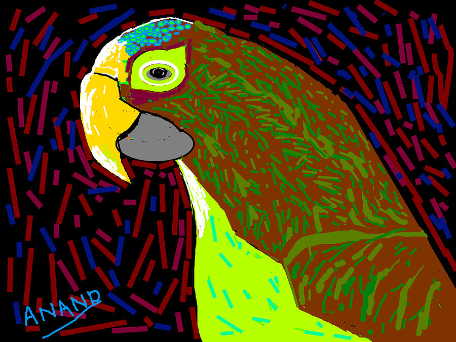 Still-life Digital Art - Parrot-3 by Anand Swaroop Manchiraju