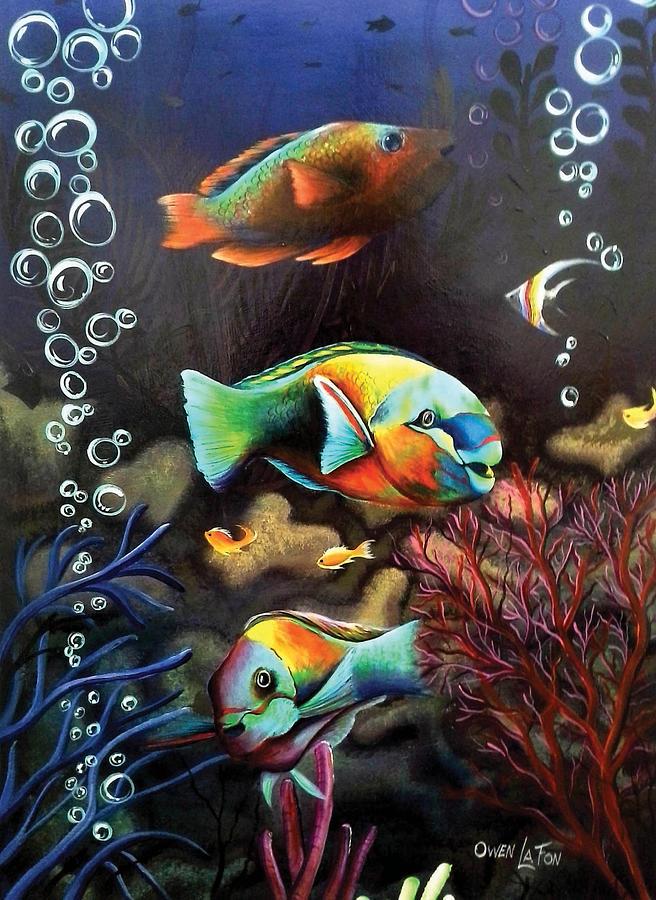Parrot Fish by Owen Lafon