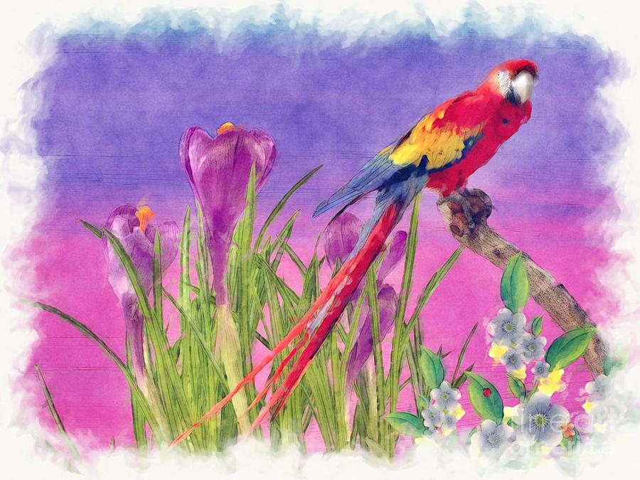 Parrot Painting - Parrot by Liane Wright