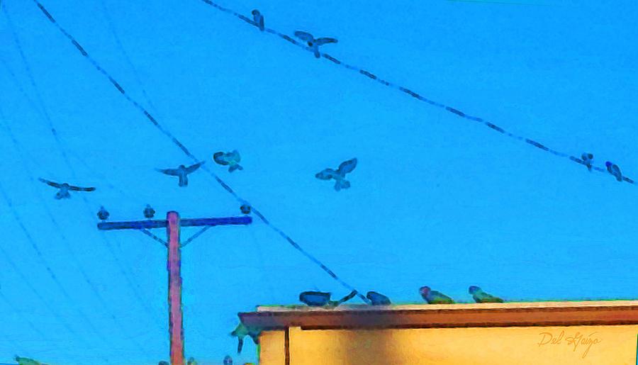 Parrots On The Gold Line South Pasadena California Photograph
