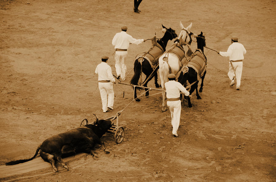 Transportation Photograph - Part Of The Tradition by Laura Jimenez
