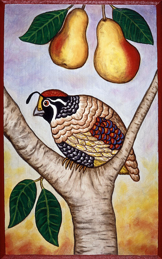 Bird Painting - Partridge In A Pear Tree by Linda Mears