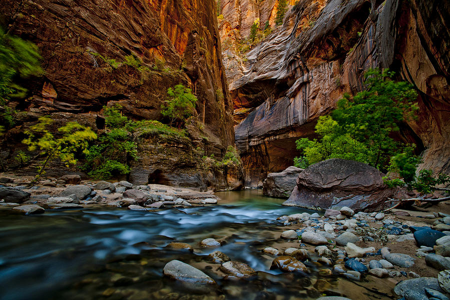 America Photograph - Party River by Juan Carlos Diaz Parra