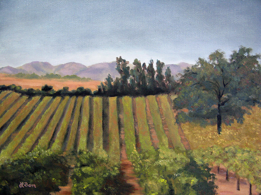 Paso Robles Vineyard I by Lisa Barr