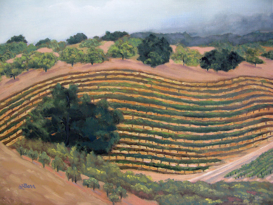 Paso Robles Vineyard II by Lisa Barr