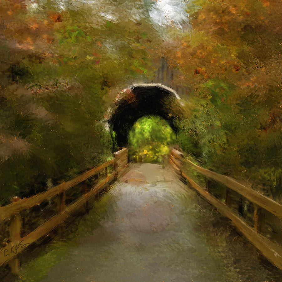 Drain Photograph - Pass Creek Bridge by Dale Stillman