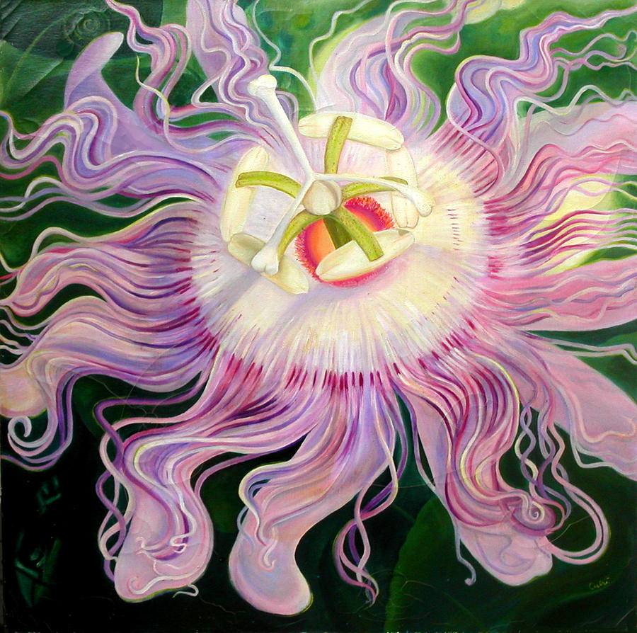 Passion Flower Painting By Anne Cameron Cutri