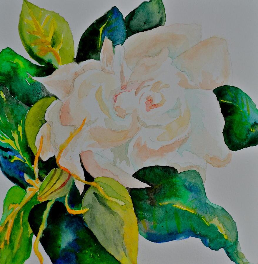 Gardenia Painting - Soft by Beverley Harper Tinsley