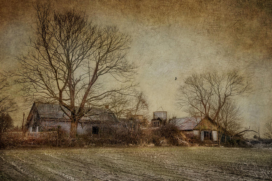 Farm Photograph - Past Prime by Robin-Lee Vieira
