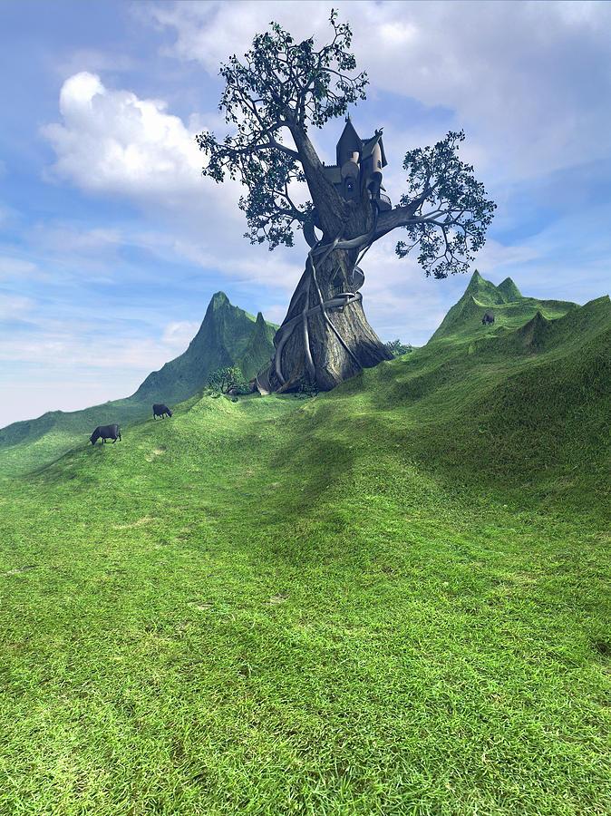 Grass Digital Art - Pasture by Cynthia Decker