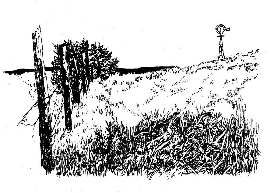 Nebraska Sandhills Drawing - Pasture  by Jean Ann Curry Hess