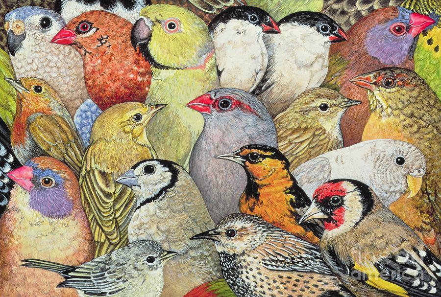 Birds Painting - Patchwork Birds by Ditz