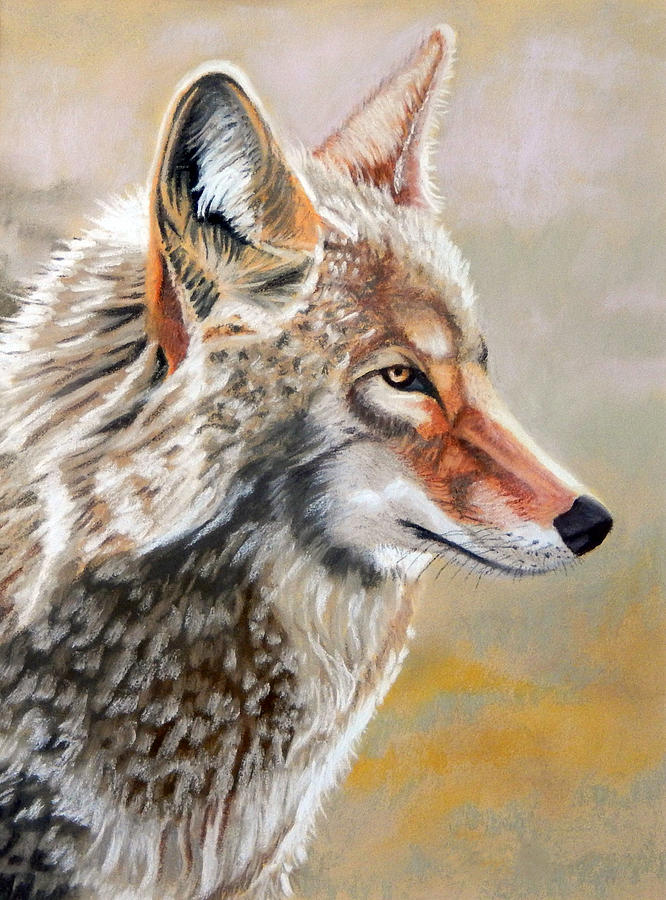 Dogs Pastel - Patchwork Coyote by Tanya Provines