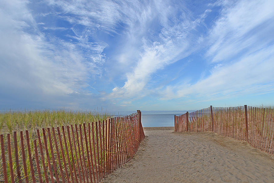 Beach Photograph - Path To The Beach by Marjorie Tietjen
